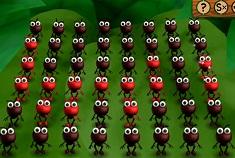 Ant Chorus