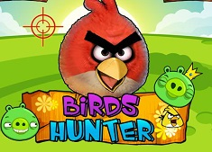 Birds Hunter