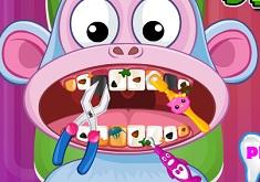 Boots Dentist
