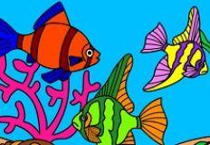 Coloring Underwater World…