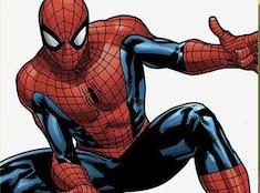 Cool Spiderman Puzzle