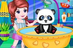 Cute Pet Panda