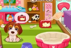 Cute Puppy Pet Care