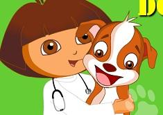 Dora Pet Doctor
