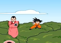 Dragon Ball Goku Fight
