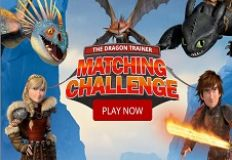 Dragon Trainer Matching Challenge