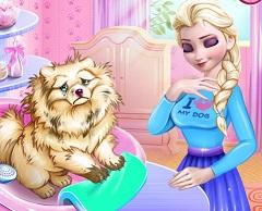 Elsa Dog Care