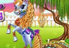 Fairy Pony Horse Mane Braiding