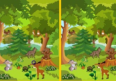 Find the Difference Jungle Friends