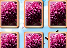 Flowers Memory Cards