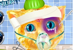 Ginger Head Injury