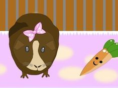 Guinea Pig Creator
