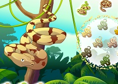 Huggy The Ball Python - Animal Games