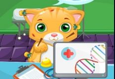 Little Cat Doctor