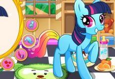 Little Pony Dream House