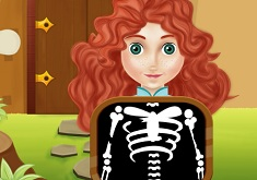 Merida Bone Repair