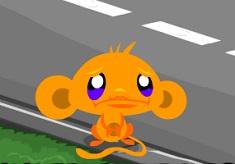 Monkey Go Happy Survive