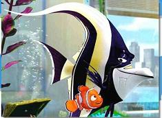 Nemo and Gill Puzzle