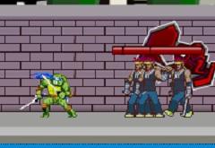 Ninja Turtle Double Dragons