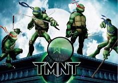 Ninja Turtle Hidden Stars