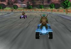 Ninja Turtles Sewer Race 3D
