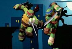 Ninja Turtles Table Tenis
