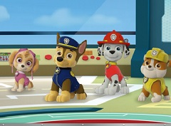 Paw Patrol Save the Day