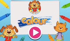 Pip Ahoy Colour