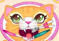 Precious Kitty Dentist