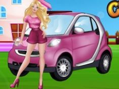Princess Pink Car Cleaning