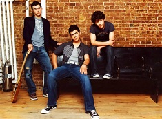 Puzzle Jonas Brothers on Couch