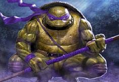 Puzzle with Donatello