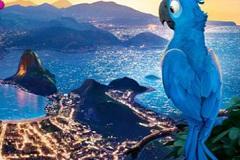 Rio 6 Diff