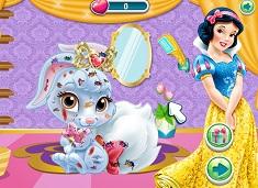 Snow White Pet Care