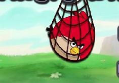 Surround Angry Birds
