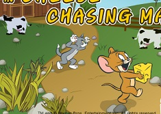 Tom And Jerry Cheese Chasing Maze Tom And Jerry Games