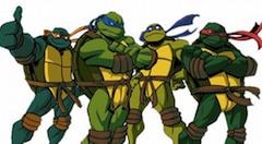 Turtle Ninja Memory