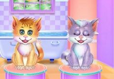 Twin Kitties Spa Caring